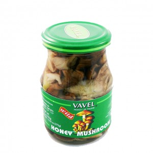 VAVEL - HONEY MUSHROOMS