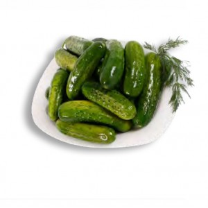 FRESH-SALTED CUCUMBERS - MARINATED IN PAIL