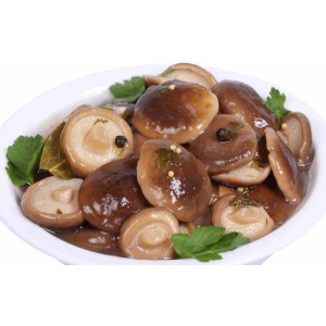 SLIPPERY JACK MUSHROOMS MASLYATA - MARINATED IN PAIL